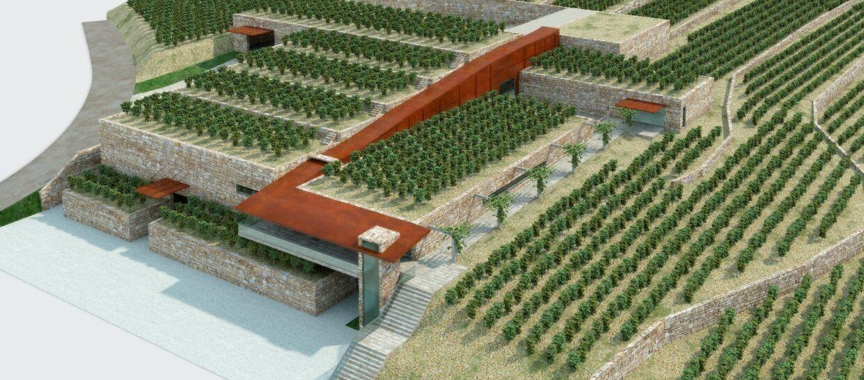 Evaluación Ambiental del PEPID para la Bodegas Casal de Armán,  Ribadavia